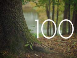 ブログ 100記事投稿